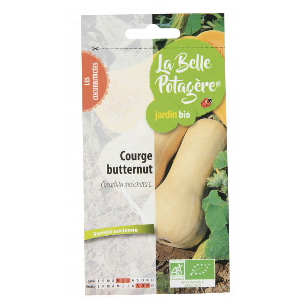 Courge Butternut 2,5g
