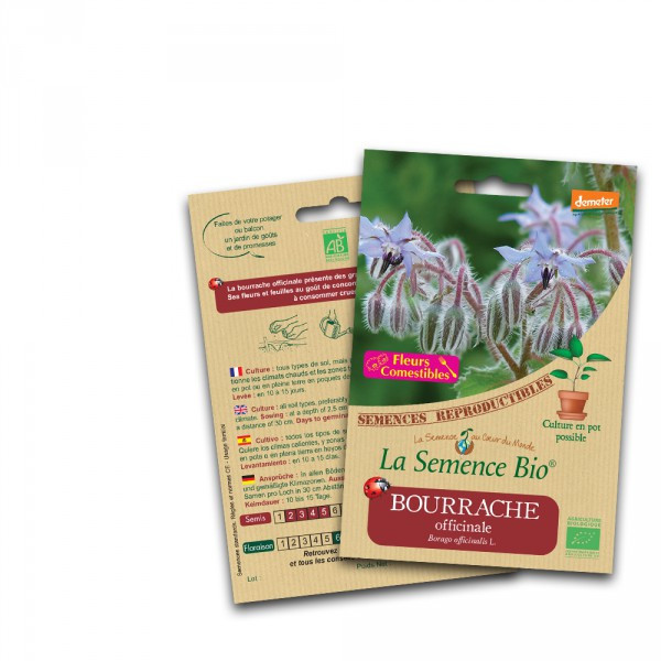 Bourrache officinale - 1.5g