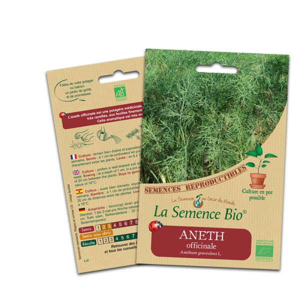 Aneth officinale - 0.4g